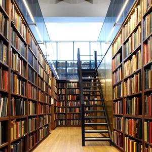 Библиотеки Карсуна