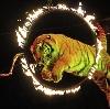 Цирки в Карсуне
